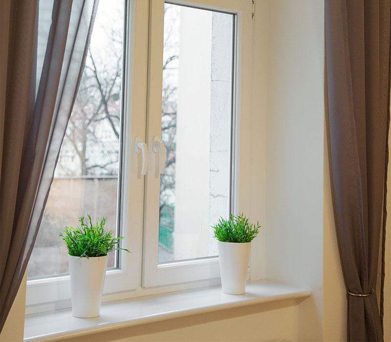 widok_z_okna