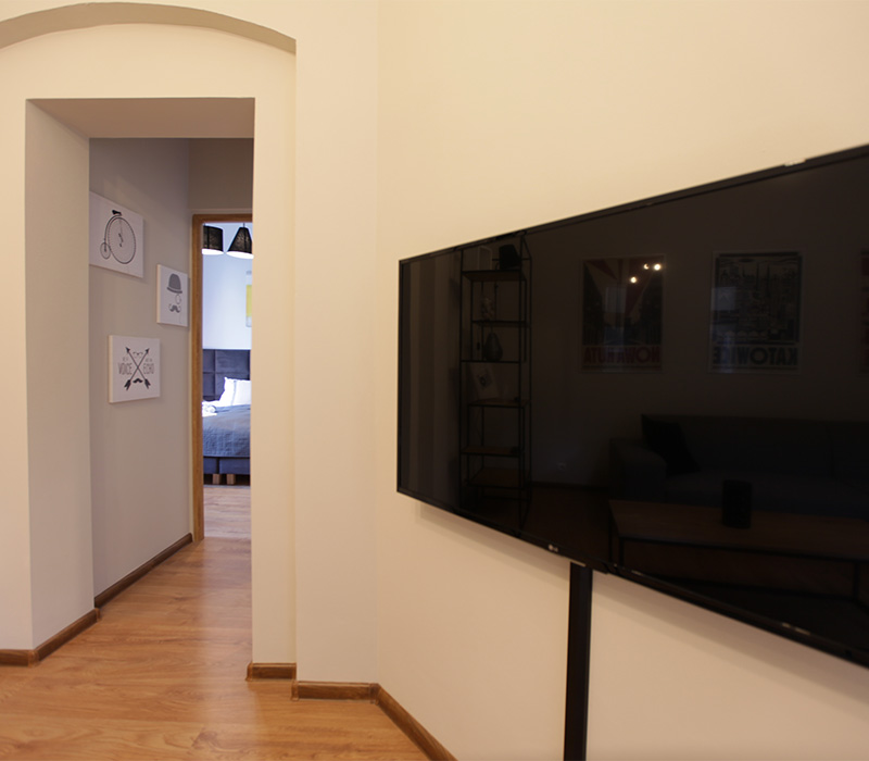 room-large-apartament-poznan